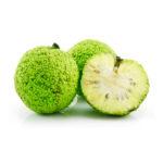 Маклюра плод (Адамово яблоко) 1 гр. = 1 руб.