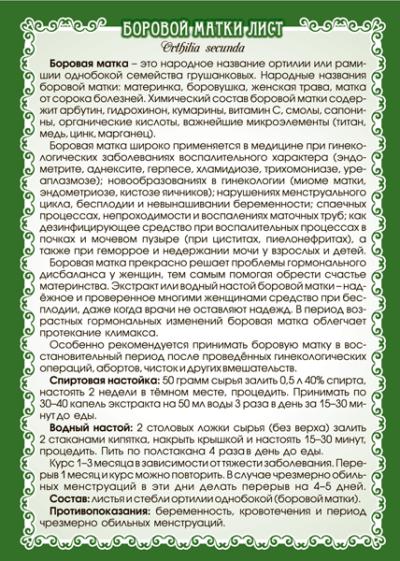 Боровая матка (лист) 50 г
